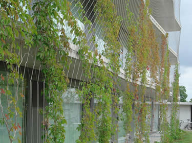 Stainless Steel Rope Mesh Building Facade Green Wall